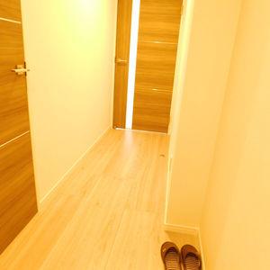セザール池袋要町(3階,3799万円)のお部屋の玄関
