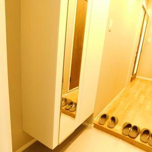 池袋ウエストハイツ(1階,)のお部屋の玄関