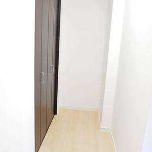ルリオン錦糸町エグゼ(3階,)の納戸