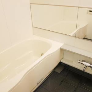 ルリオン錦糸町エグゼ(3階,)の浴室・お風呂