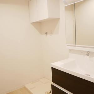 アドゥスイール両国石原(3階,3780万円)の化粧室・脱衣所・洗面室
