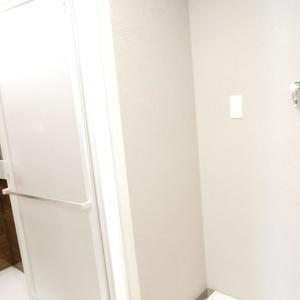 ダイアパレス本所(4階,)の化粧室・脱衣所・洗面室