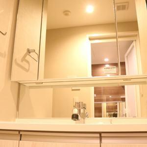 クオリア後楽園(2階,4580万円)の化粧室・脱衣所・洗面室
