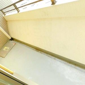 イトーピアアルファシティ池袋(11階,3580万円)のバルコニー