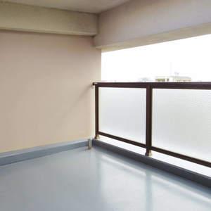 朝日マンション新中野(9階,)のルーフバルコニー