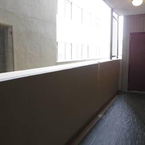 モナーク新中野ステーションプラザ(5階,)のフロア廊下(エレベーター降りてからお部屋まで)