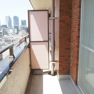 ハイネスロフティ(9階,)のバルコニー