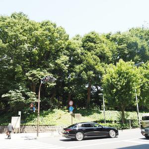 ハイネスロフティの近くの公園・緑地