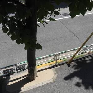 ライオンズマンション代々木(1階,)のお部屋からの眺望