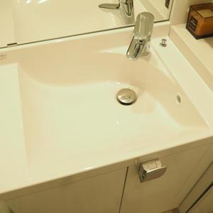 メゾンドール代々木(4階,4099万円)の化粧室・脱衣所・洗面室