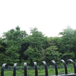 秀和第2神宮レジデンス(4階,3480万円)のお部屋からの眺望