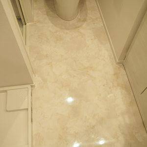 ハイネスロフティ(9階,)のトイレ