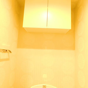 ハウス高田馬場(2階,)のトイレ