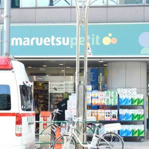ハウス高田馬場の周辺の食品スーパー、コンビニなどのお買い物