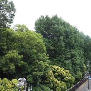 御苑パビリオン(6階,2998万円)のお部屋からの眺望