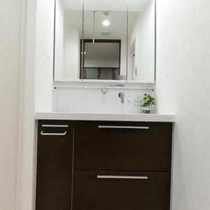 西戸山タワーホウムズノースタワー(2階,)の化粧室・脱衣所・洗面室
