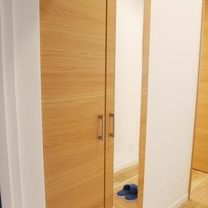 サンハイツ亀戸(5階,3390万円)のお部屋の玄関