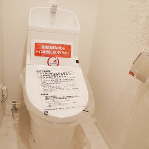 サンハイツ亀戸(5階,3390万円)のトイレ