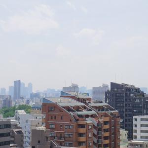 ファミール亀戸(13階,)のお部屋からの眺望