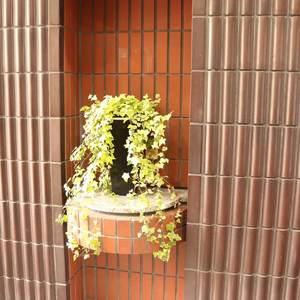 ライオンズステーションプラザ大塚第2のエレベーターホール、エレベーター内