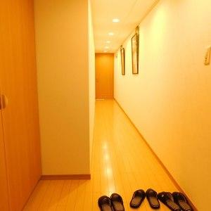 アイディーコート池袋西スターファーロ(3階,)のお部屋の廊下