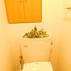 アイディーコート池袋西スターファーロ(3階,)のトイレ