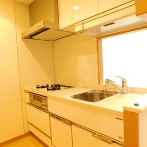 日神パレステージ池袋西(1階,)のキッチン