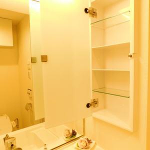 池袋パークハイツ(8階,2499万円)の化粧室・脱衣所・洗面室