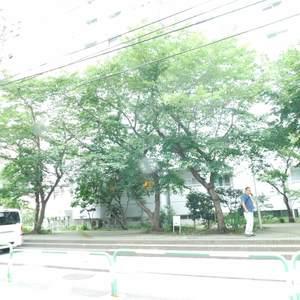 東池袋ハイツ弐番館の外観