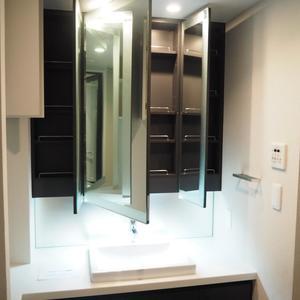パークコート神宮前(14階,)の化粧室・脱衣所・洗面室