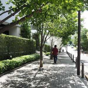 パークコート神宮前のマンションの入口・エントランス