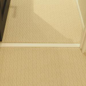 パークノヴァ神宮前(2階,4480万円)のお部屋の廊下