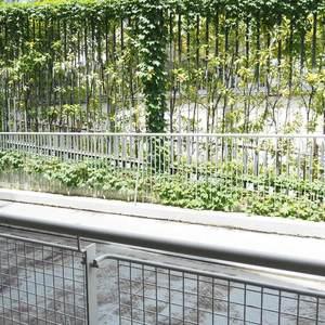 パークノヴァ神宮前(2階,4480万円)のバルコニー