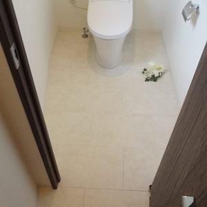 クローバー六本木(10階,)のトイレ