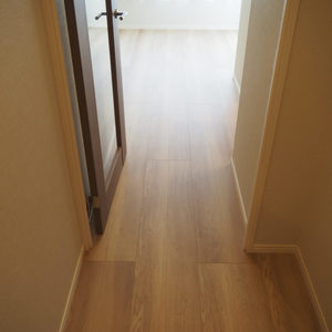パレ乃木坂(7階,)のお部屋の廊下