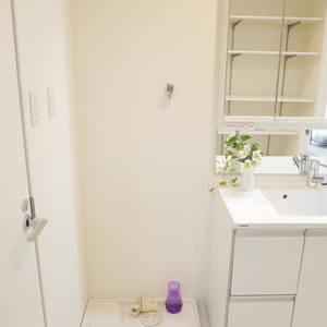 ライオンズマンション門前仲町第3(3階,)の化粧室・脱衣所・洗面室