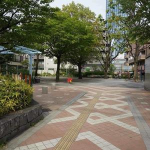 新神楽坂ハウスの近くの公園・緑地