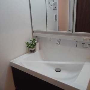GSハイム目白(3階,)の化粧室・脱衣所・洗面室