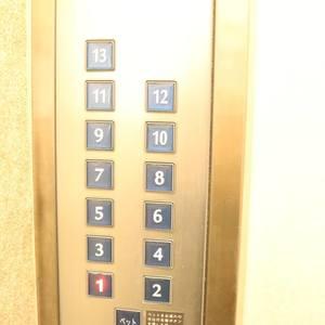 フォルティア文京千石のエレベーターホール、エレベーター内