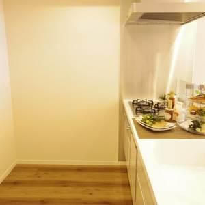 ライオンズマンション中野第2(2階,4780万円)のキッチン