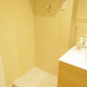 ハイネス東中野プリメール(2階,4496万円)の化粧室・脱衣所・洗面室