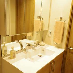 ハイネス東中野プリメール(2階,)の化粧室・脱衣所・洗面室