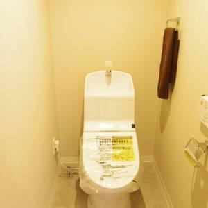 ハイネス東中野プリメール(2階,)のトイレ