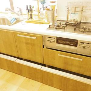 ハイネス東中野プリメール(2階,)のキッチン