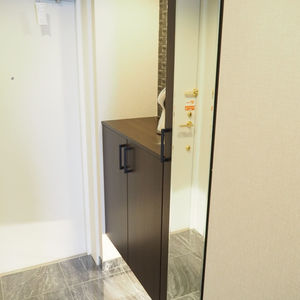 ベルメゾン六本木タワーズ(8階,)のお部屋の玄関