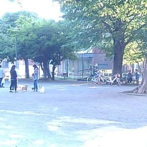 落合明穂ハイツの近くの公園・緑地