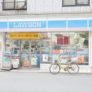 ライオンズマンション錦糸町親水公園第2の周辺の食品スーパー、コンビニなどのお買い物