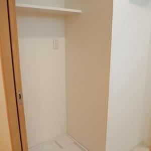 ライオンズマンション錦糸町親水公園第2(2階,4190万円)の化粧室・脱衣所・洗面室