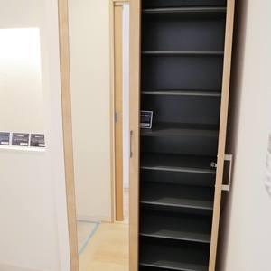 カーサ田原町(11階,4290万円)のお部屋の玄関