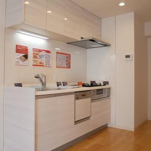 カーサ田原町(11階,)のキッチン